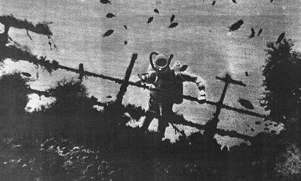 OTRA IMAGEN DEL PECIO (Foto Archivo)