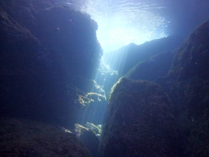 funnels salgar diving menorca (9)