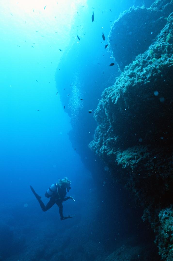 Giants_ext reserva marina isla del aire salgar diving menorca francis abbott (4)